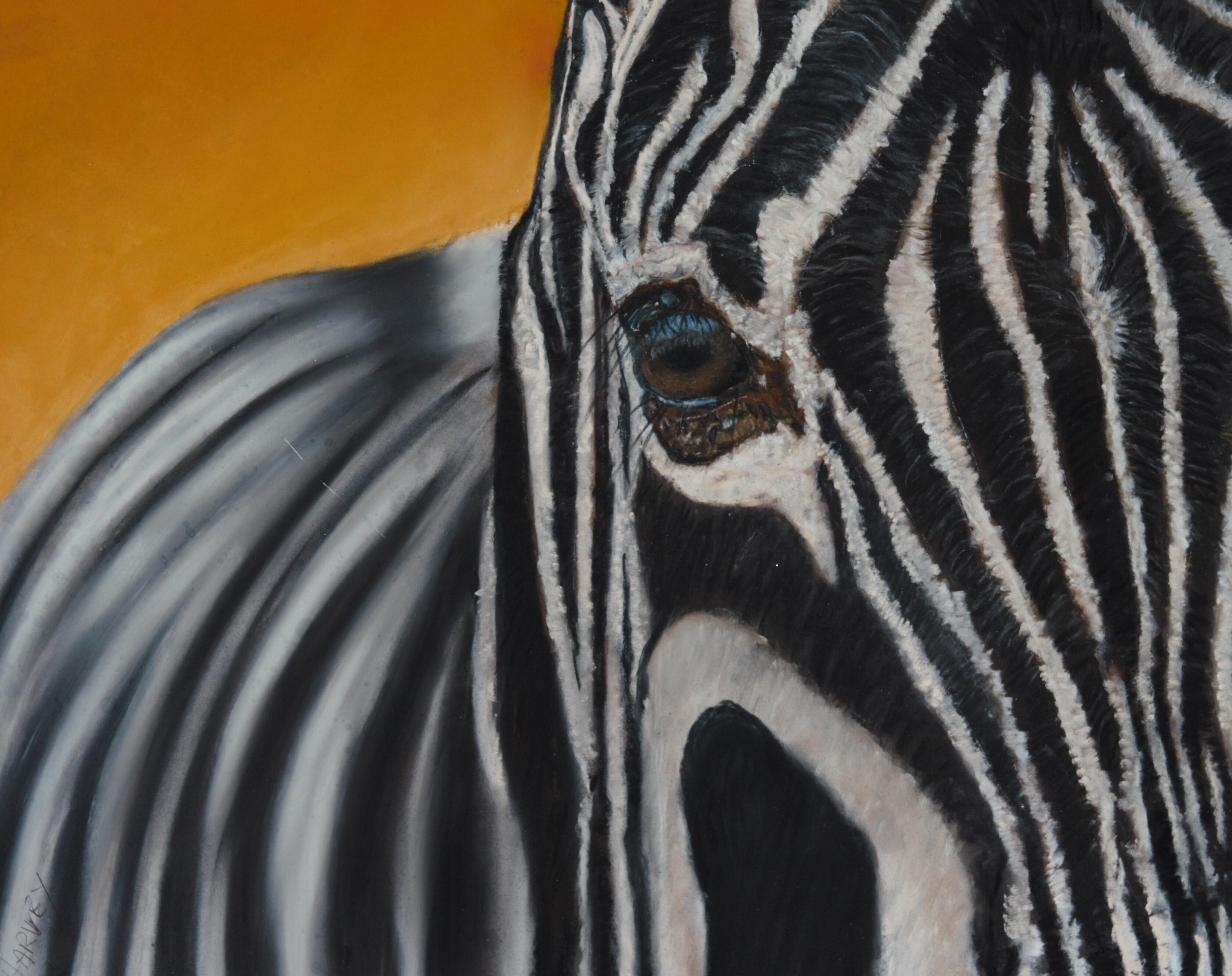 zebra cropped